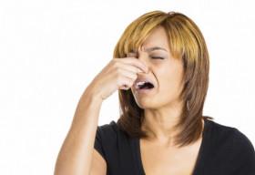 """Mùi """"xì hơi"""" ngừa được bệnh tim và đột quỵ?"""