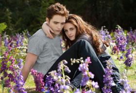 Top 10 cặp đôi biểu tượng của Hollywood (1)