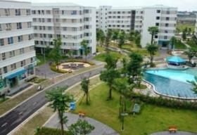 Nhiều dự án chung cư 10 triệu đồng xuất hiện trên thị trường