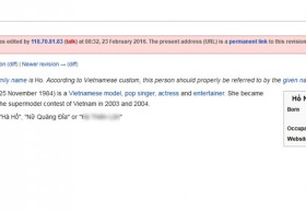 Wikipedia Việt bị nhiều người chỉnh sửa thiếu ý thức