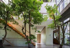 'Hô biến' cả rừng cây xanh vào trong nhà phố