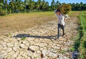 Xi măng INSEE Việt Nam tiếp tục ủng hộ thêm 500 triệu đồng hỗ trợ phòng chống dịch COVID-19 và hạn mặn
