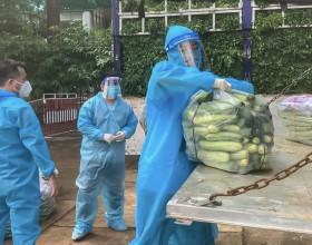 Hoa hậu Hoàn Vũ Việt Nam hỗ trợ người dân TPHCM bằng những chuyến xe thực phẩm 0 đồng