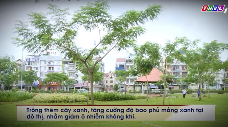 cau chuyen cuoc song 2 Câu chuyện cuộc sống: Có nên đốn hạ cây xanh trong mùa mưa bão