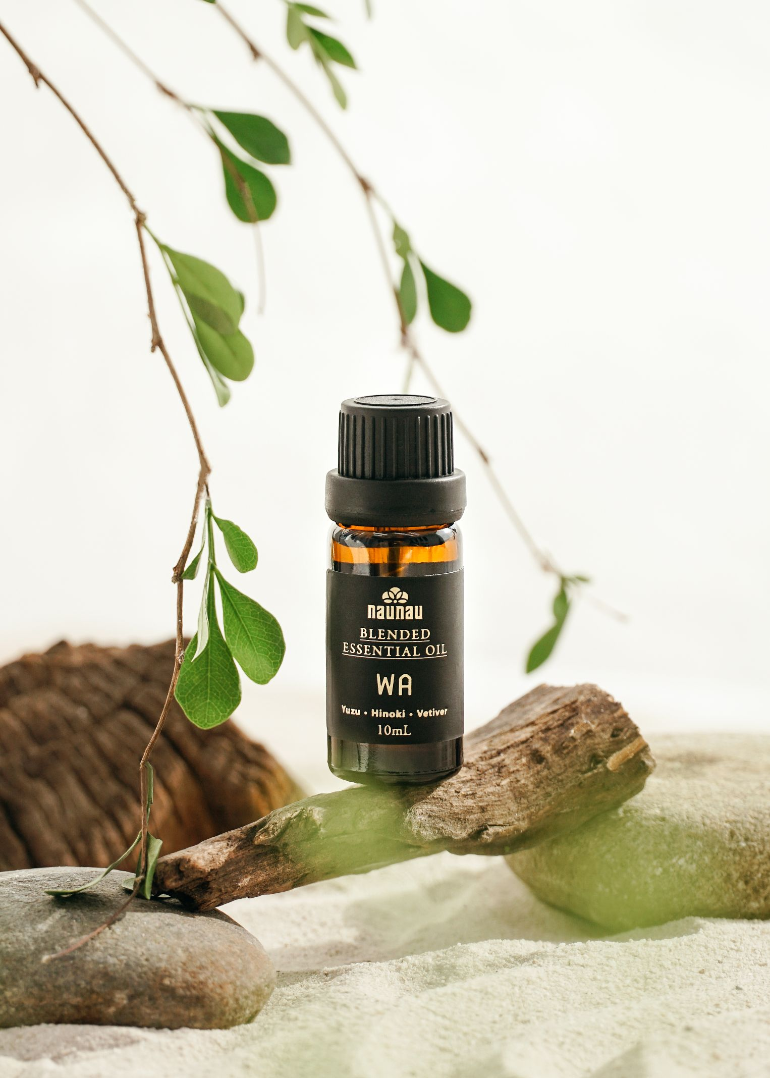 tinh dau NauNau 6 Cách nâng cao hệ miễn dịch, thanh lọc không gian sống bằng tinh dầu thiên nhiên